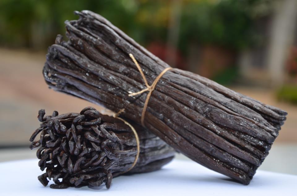 Bourbon Vanilla Beans