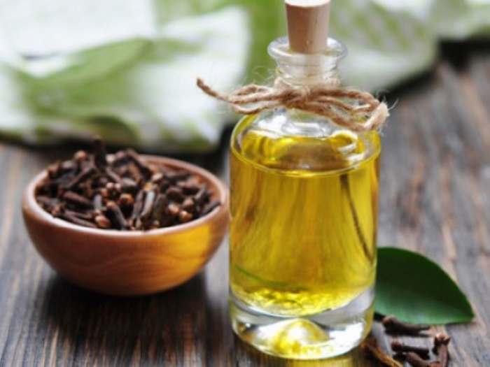 clove leaf oil supplier